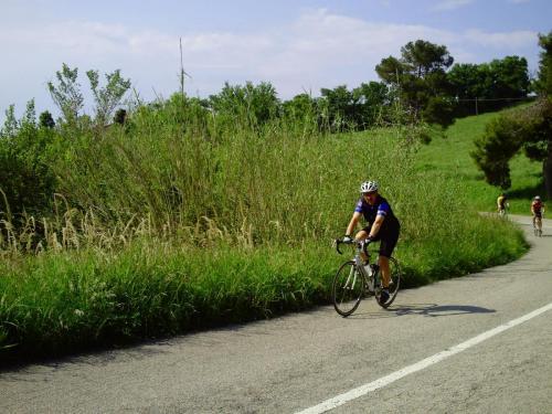 Gal 2010 Riccione0040